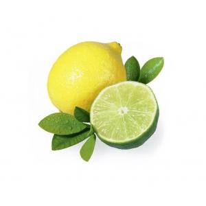 Citrus & Citron vert